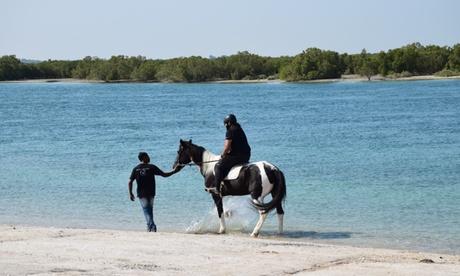 One-Hour Desert Horse Ride