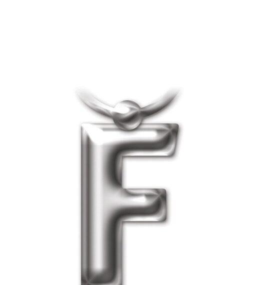 Letter Keyring - Letter 'F'